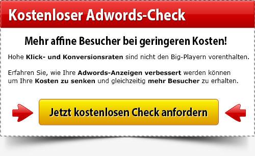 Kostenloser Adwords Check